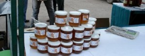 Gran avance en el proceso de venta directa de miel