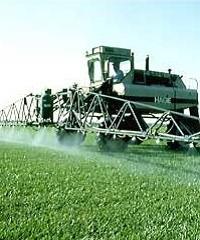 Herbicidas residuales: factores que influyen su performance