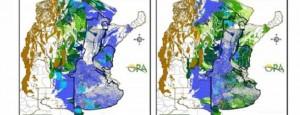 Excesos hídricos predominan en el área sojera
