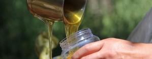 Se registraron 190 salas de extracción de miel en Entre Ríos