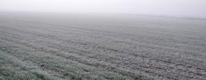 Se espera un marcado descenso de las temperaturas