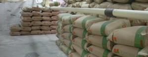 Crecieron exportaciones argentinas de harina de trigo