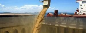 Vuelve a bajar la liquidación de divisas por agroexportación
