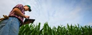 Empresarios del agro son optimista de cara al 2018