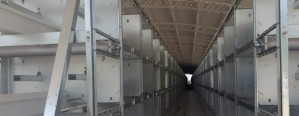 Primer equipo automático de producción de huevos