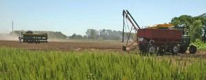 En 2018 las labores agrícolas serán más caras